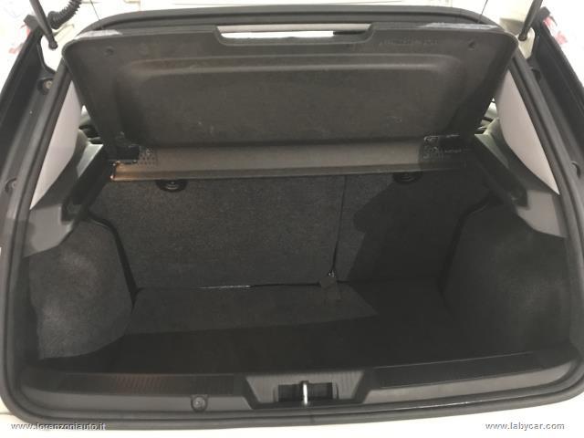 FIAT Punto 1.3 MJT II 75 CV 5 porte Young